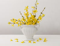 Todavía vida con las flores Fotos de archivo