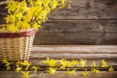 Todavía vida con las flores amarillas Imagen de archivo