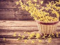Todavía vida con las flores amarillas Foto de archivo