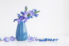 Todavía vida con las flores azules Imagen de archivo libre de regalías