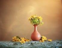 Todavía vida con las flores de la primavera Foto de archivo