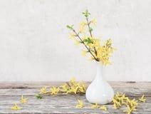 Todavía vida con las flores de la primavera Fotografía de archivo libre de regalías