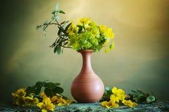 Todavía vida con las flores de la primavera Fotos de archivo