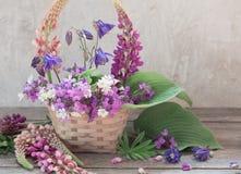 Todavía vida con las flores del verano Imagen de archivo libre de regalías