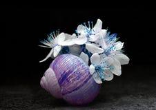 Todavía vida con las flores en cáscara Imagen de archivo libre de regalías