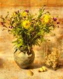 Todavía vida con las flores y los shelles Fotos de archivo