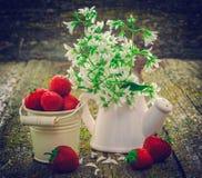 Todavía vida con las fresas rojas Imagen de archivo libre de regalías