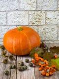 Todavía vida con las frutas de la acción de gracias de la caída del otoño Fotografía de archivo