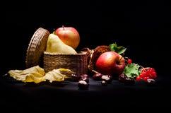 Todavía vida con las frutas del otoño fotografía de archivo libre de regalías
