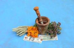 Todavía vida con las hierbas, los dólares y el mortero antiguo con la maja Foto de archivo libre de regalías