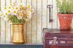 Todavía vida con las hierbas y las flores foto de archivo libre de regalías