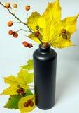 Todavía vida con las hojas de otoño, los escaramujos y una botella Imagen de archivo