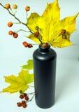 Todavía vida con las hojas de otoño, los escaramujos y una botella Fotografía de archivo libre de regalías