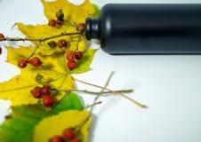 Todavía vida con las hojas de otoño, los escaramujos y una botella Imagenes de archivo