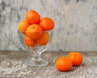Todavía vida con las mandarinas Imagen de archivo libre de regalías