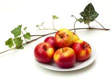 Todavía vida con las manzanas Fotografía de archivo
