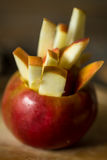 todavía vida con las manzanas en fondo de madera Fotos de archivo libres de regalías