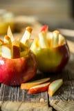 todavía vida con las manzanas en fondo de madera Imágenes de archivo libres de regalías