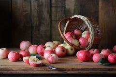 Todavía vida con las manzanas en un estilo rústico Imagen de archivo
