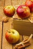 Todavía vida con las manzanas frescas Imagen de archivo libre de regalías