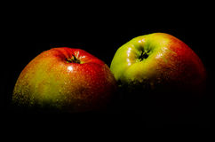Todavía vida con las manzanas frescas Fotografía de archivo libre de regalías