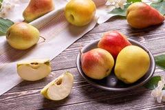 Todavía vida con las manzanas y las peras Fotografía de archivo libre de regalías