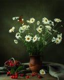 Todavía vida con las margaritas, la cereza y la mariposa imagen de archivo libre de regalías