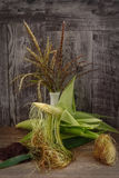 Todavía vida con las mazorcas de maíz, seda del maíz Foto de archivo libre de regalías