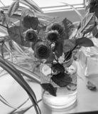 Todavía vida con las rosas Imagen de archivo