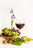 Todavía vida con las uvas, el vino, las nueces y la lavanda Imagen de archivo