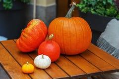 Todavía vida con las verduras del otoño Fotografía de archivo libre de regalías