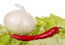 Todavía vida con las verduras frescas Fotos de archivo