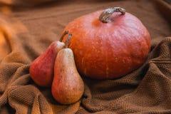 Todavía vida con las verduras y las frutas en el fondo de acogedor Foto de archivo libre de regalías