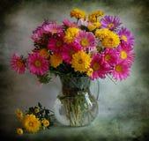 Todavía vida con los asteres y los crisantemos Foto de archivo libre de regalías