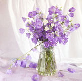 Todavía vida con los bell-flowers Fotografía de archivo
