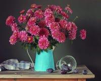 Todavía vida con los crisantemos y los ciruelos rosados Imagen de archivo