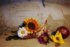 todavía vida con los girasoles y la margarita en piso de madera Imágenes de archivo libres de regalías