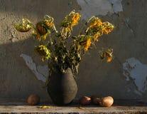 Todavía vida con los girasoles y las patatas Fotografía de archivo libre de regalías