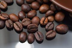 Todavía vida con los granos de café y el molino viejo Imágenes de archivo libres de regalías