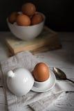 Todavía vida con los huevos Foto de archivo libre de regalías