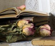 Todavía vida con los libros viejos Imagen de archivo libre de regalías