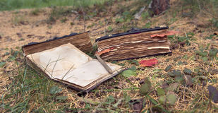 Todavía vida con los libros viejos en el jardín horizontal Imagenes de archivo