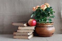 Libros viejos y flores Imagen de archivo libre de regalías