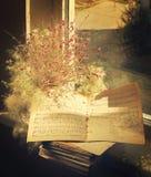 Libros de música en la ventana Fotografía de archivo libre de regalías