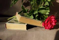 Todavía vida con los libros y las peonías Fotografía de archivo libre de regalías