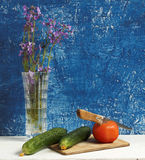 Todavía vida con los pepinos y los tomates Fotos de archivo