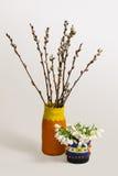 Todavía vida con los ramos de sauce y de snowdrops Imagen de archivo libre de regalías
