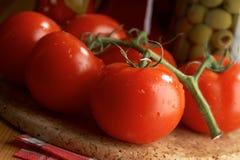 Todavía vida con los tomates Fotografía de archivo