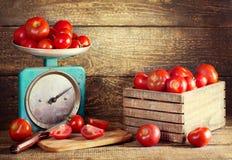 Todavía vida con los tomates frescos Foto de archivo libre de regalías