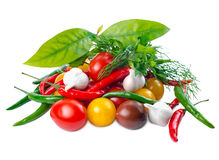 Todavía vida con los tomates rojos, amarillos, negros maduros Imagen de archivo
